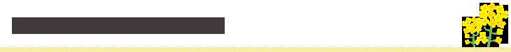 千葉県がんサポートブック