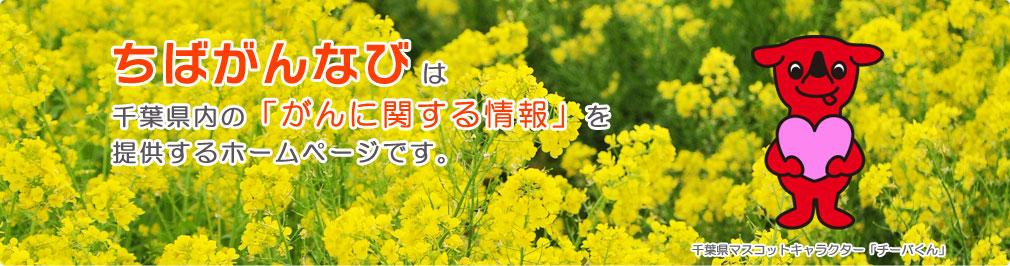 ちばがんなびは千葉県内の「がんに関する情報」を提供するホームページです。